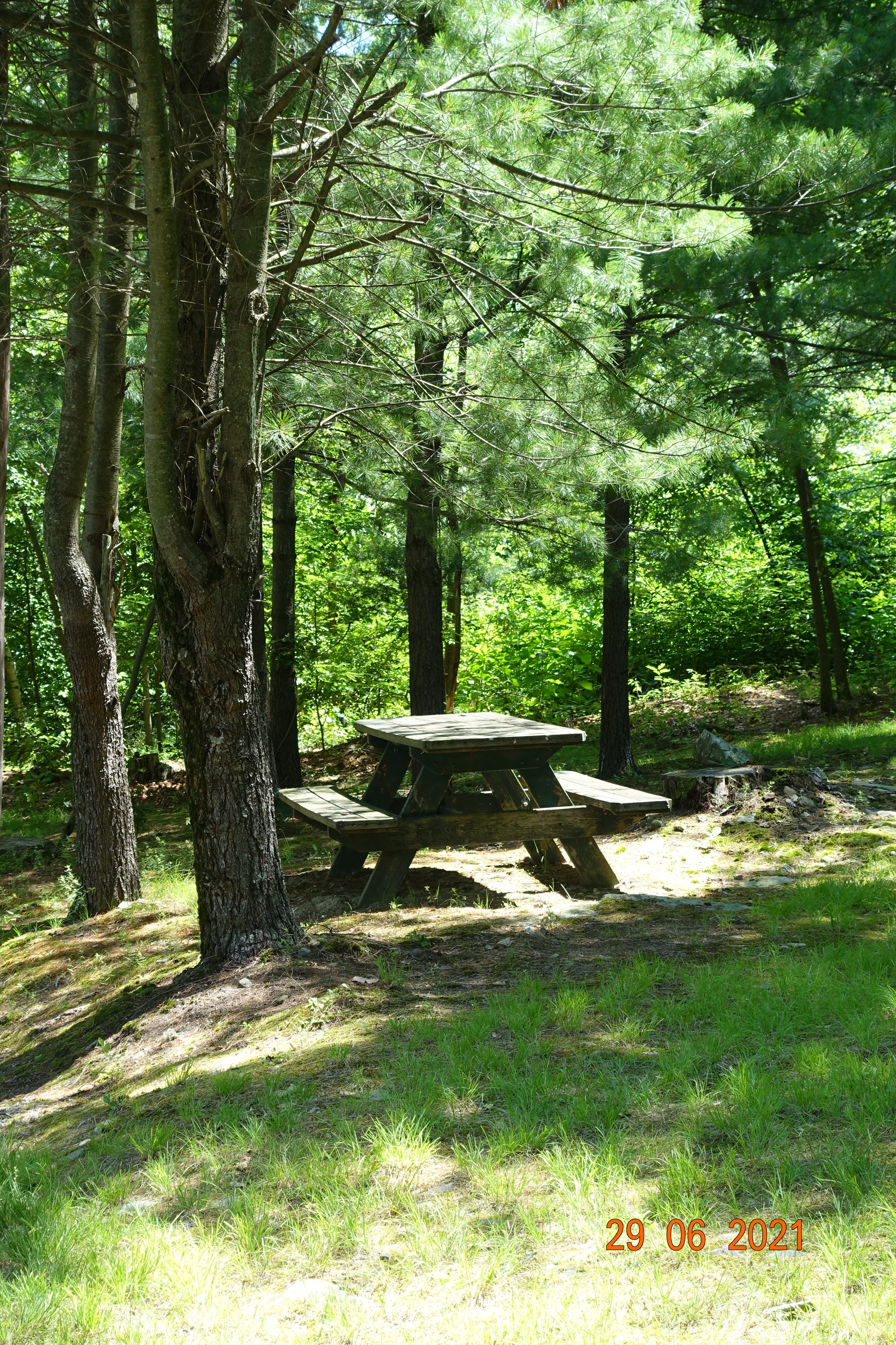 picnic-anyone